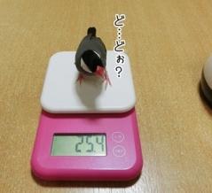 久々の体重測定