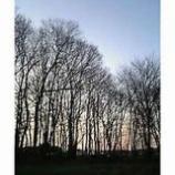 『おはよう「ゆとりの時間帯」』の画像