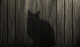 五年前出会った猫について語らせてくれ