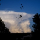 『雲とクモ 2020/12/14』の画像