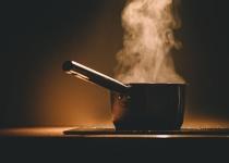 ワイ一人暮らし、キッチンにコバエ大量発生で死亡