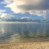 『【入社エントリー 管理部 山本】海を見れば元気になります』の画像