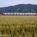 『◆一貴山の麦畑  5月の筑肥線めぐり⑤』の画像