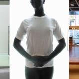 『『キリン娘 長女』裸体像Tシャツ計画』の画像