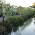 『鳥取砂丘へ。』の画像