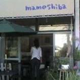 """『小さな雑貨屋さん""""mameshiba""""』の画像"""
