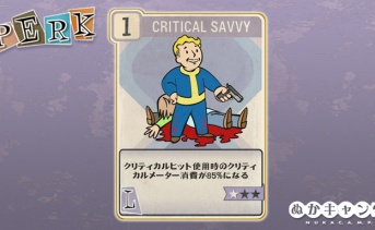 Fallout 76:Critical Savvy(Luck)