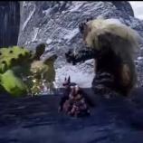 『【モンハンライズ】ゴシャハギとヨツミワドウの縄張り争い、2匹とも結構機敏だな【MHRise】』の画像