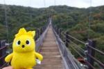 交野市には日本トップクラスの吊り橋『星のブランコ』がある!~大阪府民の森ほしだ園地のオススメレジャースポット~