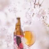 『【春限定】「サンクトガーレン さくら」発売』の画像