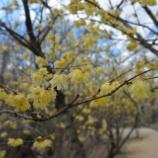 『2月18日(木)』の画像