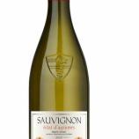 『【新商品】柑橘系の香りが楽しめるカジュアルワイン「モメサン ソーヴィニヨン・ブラン」』の画像