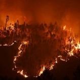 『ポルトガルの山火事』の画像
