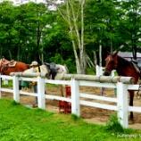 『ニセコ乗馬ビレッジ』の画像