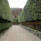 『銀閣寺に。』の画像