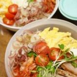 『夏の冷たい麺シリーズ 12-⑧』の画像