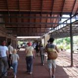 『カンボジア シェムリアップ旅行記19 バンテアイ・スレイ』の画像
