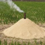 『焚き火による「ポーラス竹炭」の製造 「野焼き」か「炭焼き」か[千葉県野田市の場合]』の画像