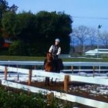 『乗馬』の画像