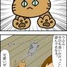 猫の真実というか飼い主の勘違いというか