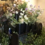 新しい花屋さんと新しい植物で気が充実♪