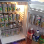 一人暮らしの3人に1人が買って後悔、いらなかった商品は「冷蔵庫・・・」