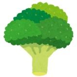 『冷凍ブロッコリーとかいうダイエットのための神』の画像