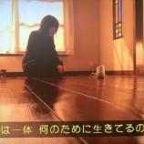 『えっ!?ドラマ『同期のサクラ』にまさかの乃木坂46が登場!!!!!!』の画像