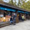 コロナの影響を受ける春休み・日曜日の岐阜公園