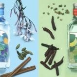 『ノンアル専門ブランド「のん」が日本初の「ノンアルコールスピリッツ」シリーズを発売』の画像