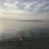 『小鮎と遊ぶ 20(2018/5/12 北小松→鴨川)』の画像