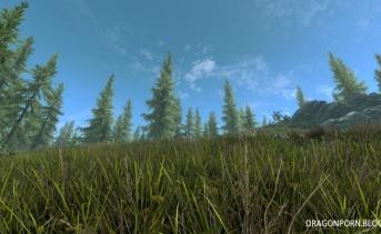Dense Grass PC