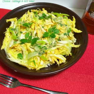 爽やかな味わいでペロっと食べちゃう!白菜とミントのサラダ