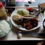 『「亀の手」が入っている味噌汁』の画像