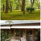 『金沢兼六園』の画像