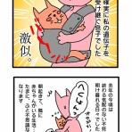 34歳 AIH→子宮筋腫摘出→ICSI にゃんちゃもロースの不妊治療(KLC)