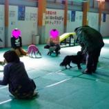 『【しつけ教室】次回の開催日は4月9日「しつけの基本は上手なお散歩から!」』の画像