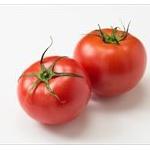 【ハゲ】トマトを食べるとハゲると発表されるwwww
