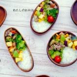 『長男・次男・私、3つのお揃い・野菜たっぷりのわっぱ弁当』の画像