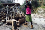 ナラ枯れ倒木の活用法①『薪として使う』!~交野の森暮らし~