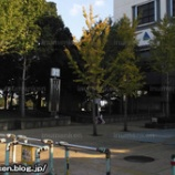 『サッカー_(総合スポーツセンター_足立区・東保木間)』の画像