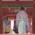 第56回鎌倉まつり2014 その46(ミス鎌倉2014)