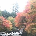 福岡山の会 あだると山の会