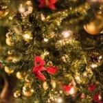 20代女に喜ばれるクリスマスプレゼントって何?