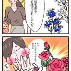 キチジローの花のおブログ