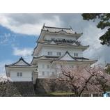 『桜を見に(by堀)』の画像