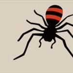 おまえら「アシダカグモはゴキブリを食べてくれる益虫なんやで!」ワイ「ぉ前アホかぁ…?」