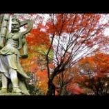 『いつか行きたい日本の名所 呑山観音寺』の画像