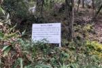 梅の種捨ててできた交野の『梅の木伝説』っていうのがある!〜京阪バスのバス停名にもなってる〜