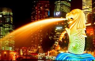シンガポール最大手銀DBS傘下の仮想通貨取引所、ローンチから取引高10倍に
